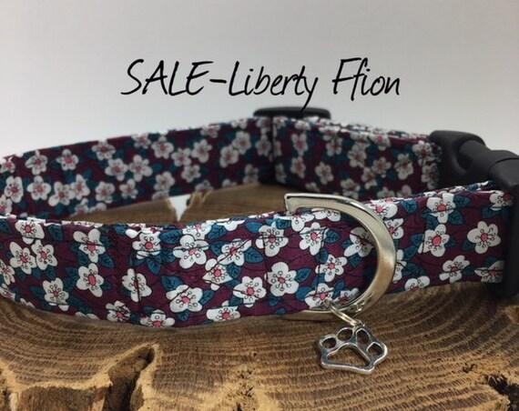Sale Dog Collar, Ffion, Liberty Dog Collar