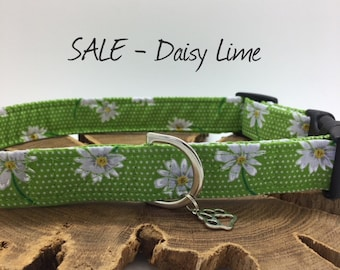 Sale Dog Collar, Daisy Lime, Floral Dog Collar