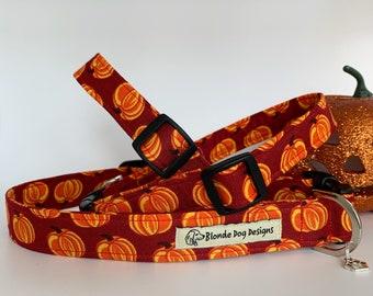 Dog Collar, Pumpkin Patch