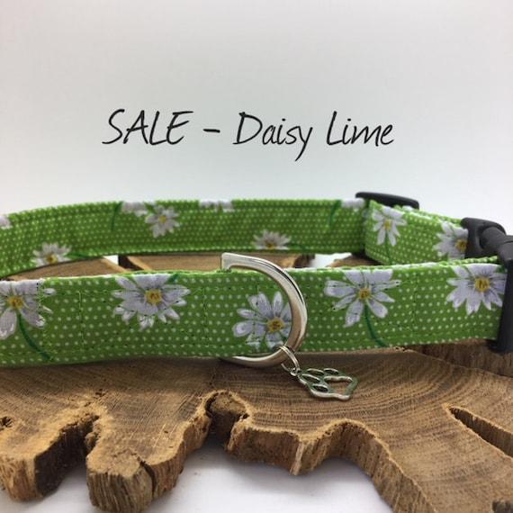 Sale Dog Collar, Daisy Lime, Floral Dog Collar, Lime Green Dog Collar, Dotty Collar, Spotty Dog Collar, Polka Dot Collar