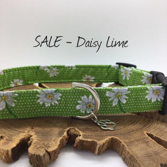 Sale Dog Collar, Daisy Lime, Floral Dog Collar