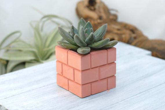 Broken Brick Succulent Planter