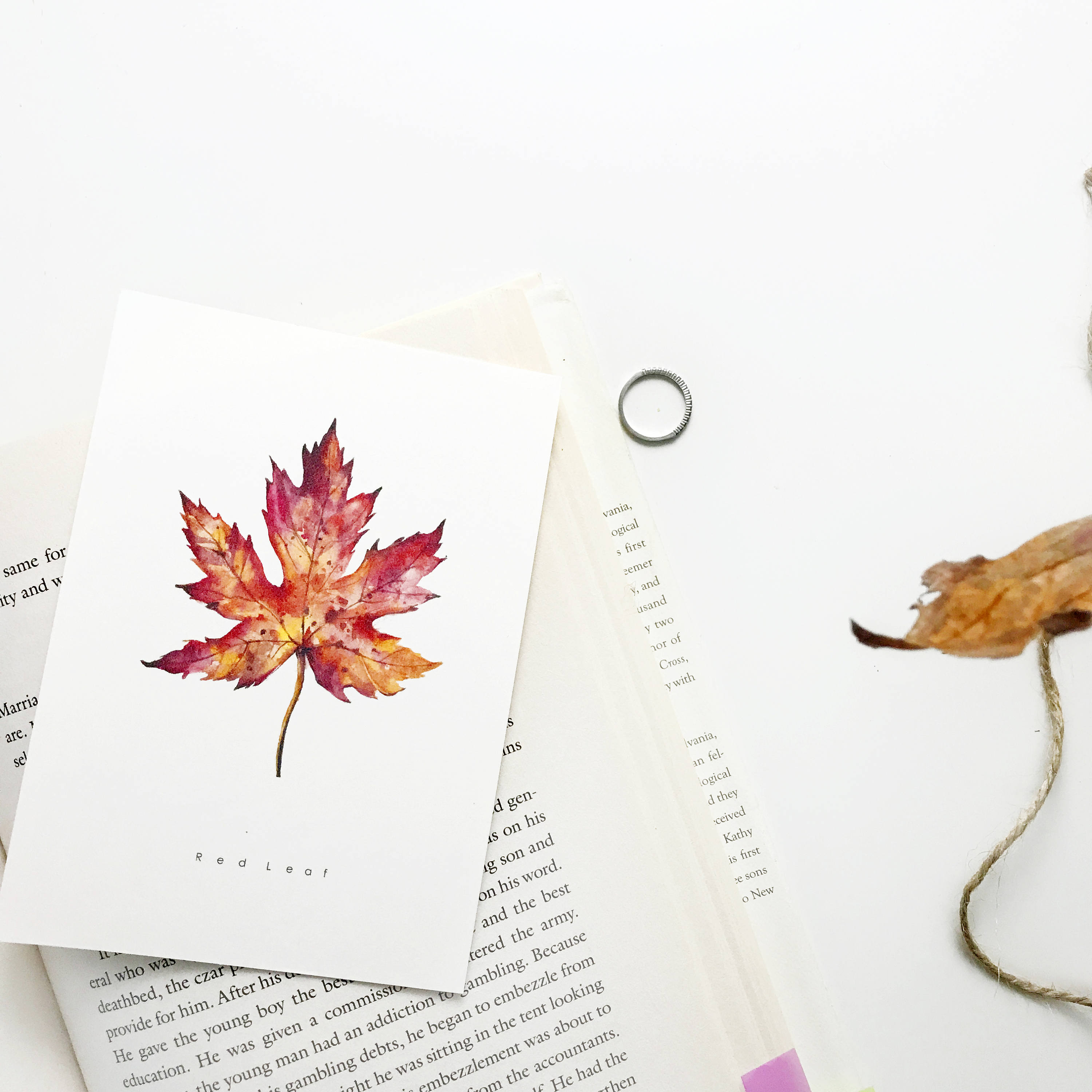 8d30c4c4154eb Handmade art Card set of 5 Watercolor Print Cards. Leaf | Etsy