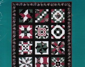 Quilt in a Day Quilter's Almanac Quilt Block Party Series Number 3