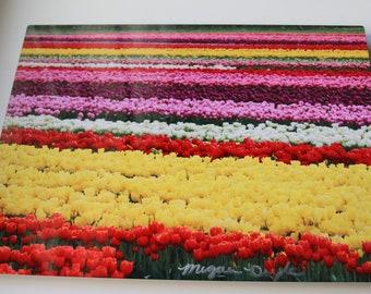Metal Tulip Field Photography Print