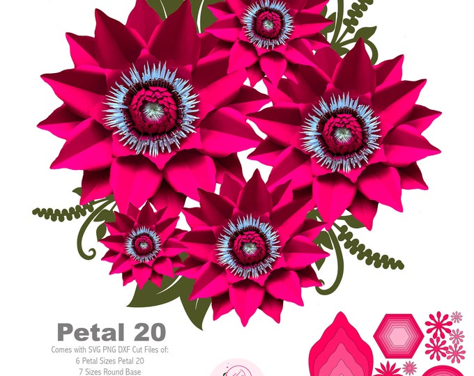 SVG DXF PNG Petal 20 Paper Flowers Template Diy Cricut and Silhouette machines ready 2 Free Flat Centers Designs + Round & Hexagon Bases