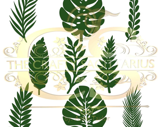 Set 13 SVG PNG DXF 9 different Tropical Leaves 1 for Paper Flowers Machine use Only Cricut and Silhouette Diy and Handmade Leaves Templates