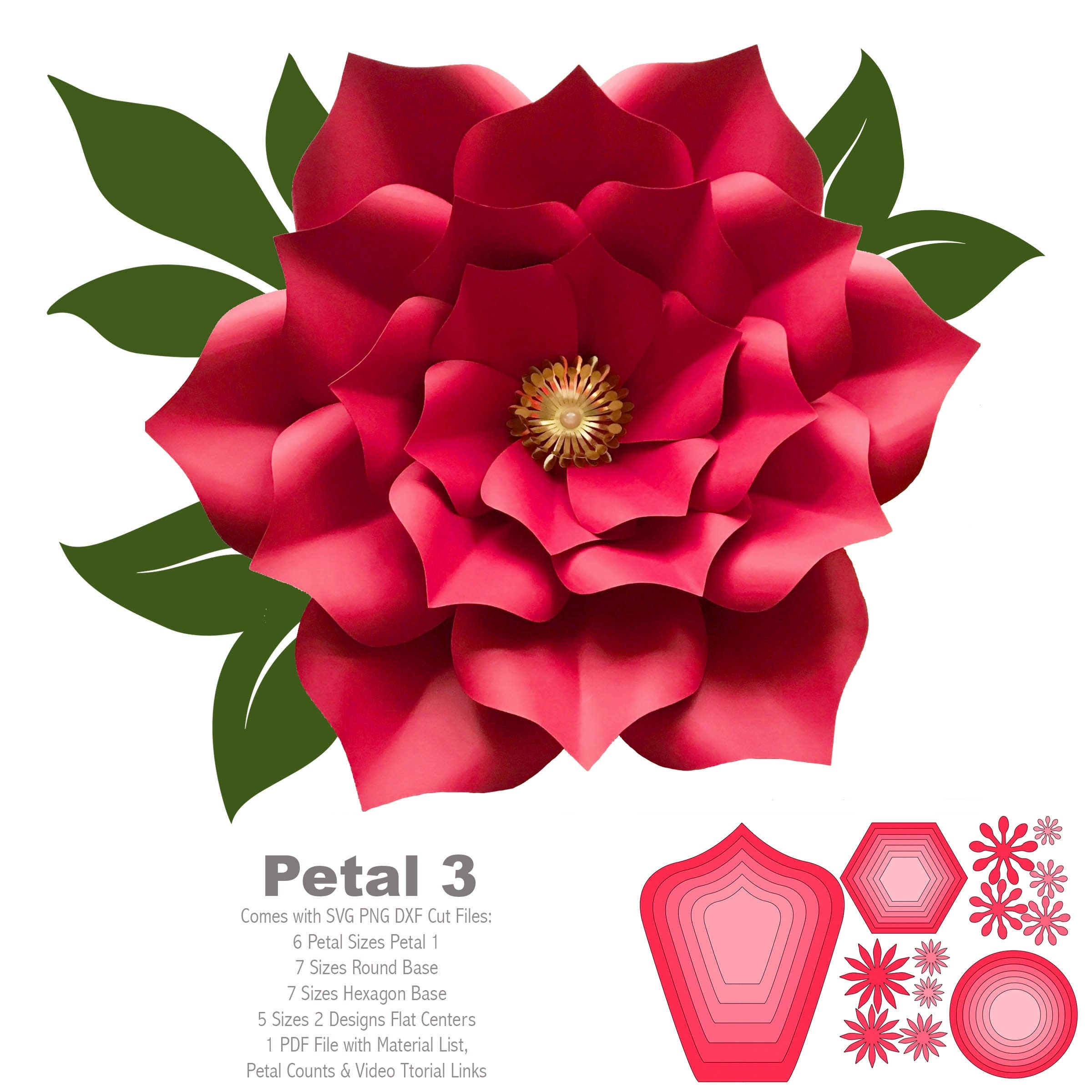 Svg Png Dxf Petal 3 Cut Files Paper Flowers Template For Cutting Machine No Resizing Needed Free Bases And Flat Centers