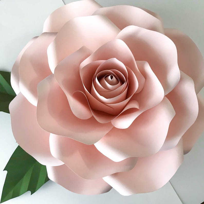 paper flowers svg new large rose template diy cricut and