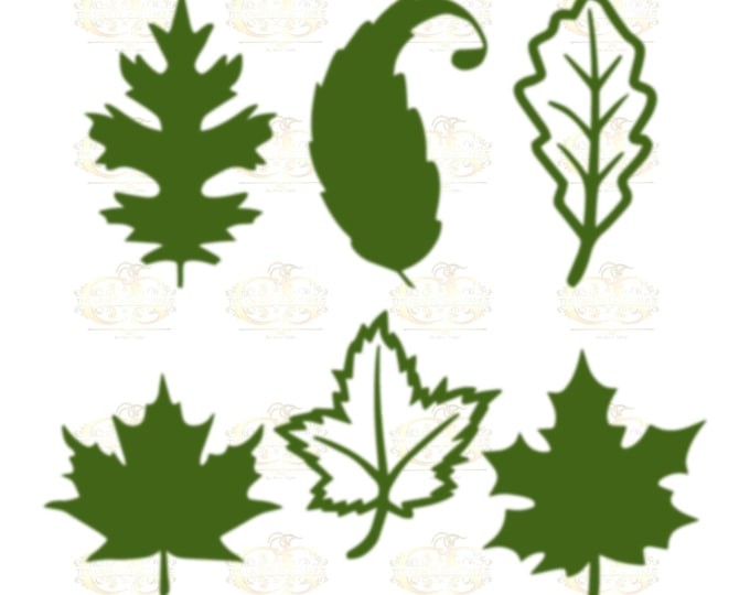 Set 20 Svg Png Dxf 6 different Leaves for Giant Paper Flowers MACHINE use Only Cricut and Silhouette DIY and Handmade Leaves Templates