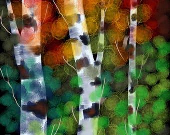 Birch In An Autumn