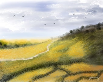 Meadows And Slopes