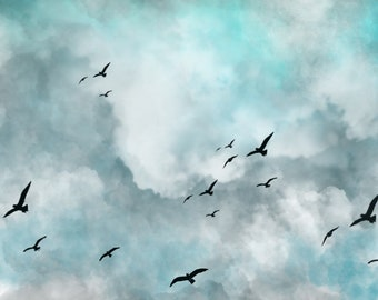 Flying Birds In The Clouds