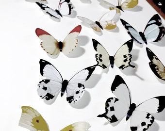 White Butterflies 3D Butterfly Wall Decor Decoration Art Wedding