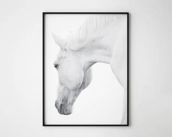 Horse print, black and white horse print, horse, wild horse, scandinavian horse, horse wall art, horse photography, white horse poster