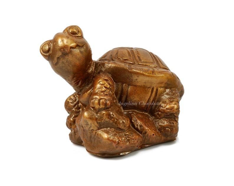 Mini Kühlschrank Für Schildkröten : Gourmet schokolade schildkröten geschenk schildkröten etsy