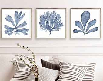 Square Wall Art Set of 3 Prints, Digital Print Download of Three Blue Sea Fan Watercolor Paintings, Matching Pictures Three Piece Wall Decor