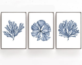 Printable Art Set of 3 Botanical Watercolor Paintings of Sea Fan Coral, Print Files 4x6 8x12 20x30 24x36, Blue Artwork Bedroom Wall Decor