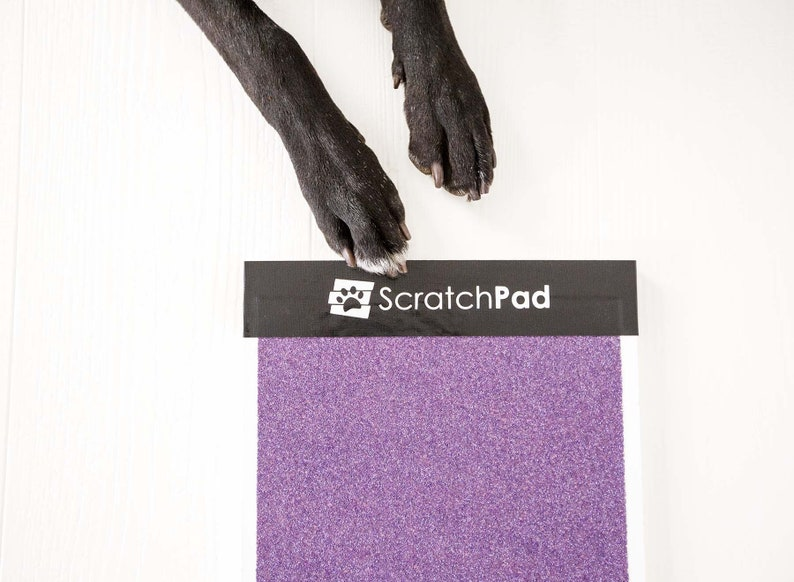 ScratchPad™  Dog Nail File  Scratch Board  Do-It-Themselves image 0