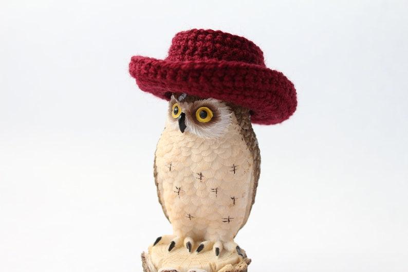 Pets Hat  Cowboy hat for hedgehog  Cowboy hat hamster  c252d138766