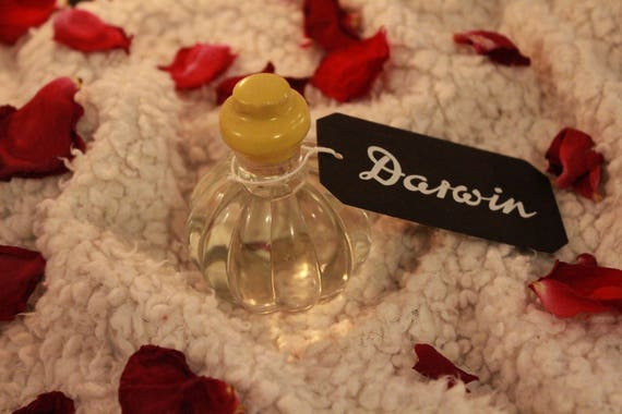 """Aftershave Lotion """"Classic"""" in Pumpkin Glass Bottle - DARWIN"""