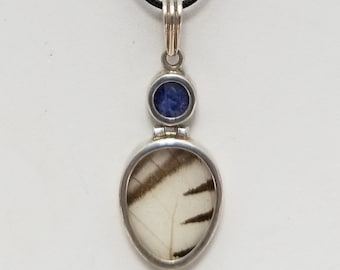 Butterfly Wing Pendant Necklace, Free Shipping (18597), Butterfly Wing Necklace, Pendantlady,Pq