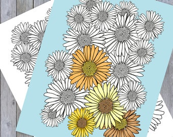 Daises - Adult Coloring Page