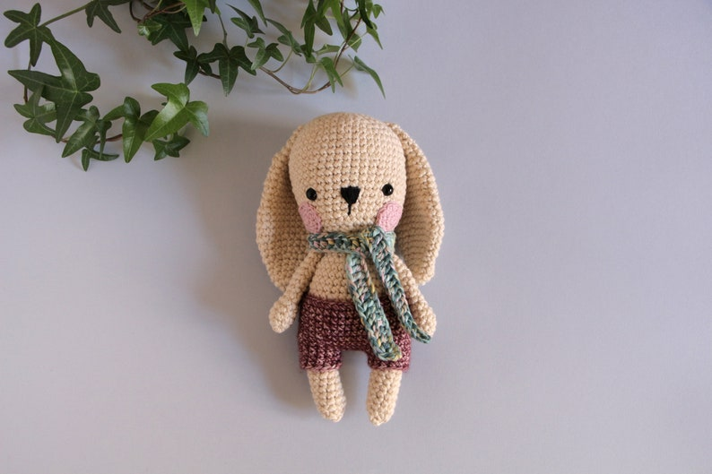 Long Eared Bunny Amigurumi - Crochet Pattern & Tutorial - Creativa ... | 529x794
