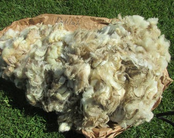 Fleece in the Grease - Delilah -  Price Reduced