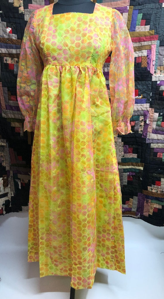 Vintage 1960's Flower Power Dress with Flocked Dai