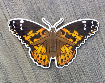 Painted Lady Butterfly Vinyl Sticker | Insect Vinyl Sticker | Nature Sticker | Laptop Sticker | Water Bottle Sticker