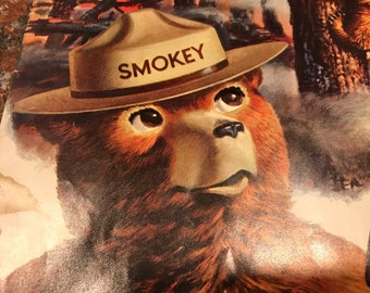 Smokey the Bear Comic Book b05547e28