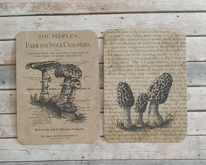 16 Vintage Mushroom Theme Journaling Cards