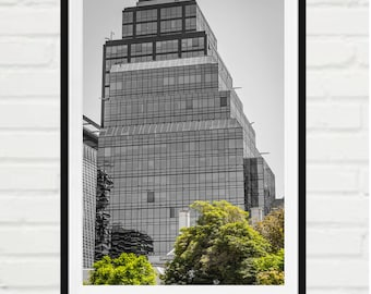 Urban glass building and trees