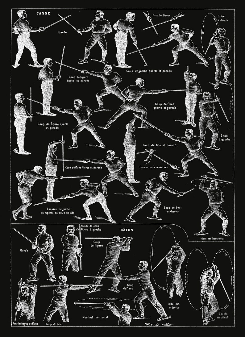 Singlestick Fencing Poster, Fencing Techniques, Baton, Cane and Stick  Chart, Vintage Style Illustration Print, 3 Color Options FD31