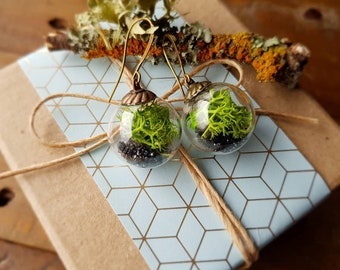 Terrarium Bead Earrings Large