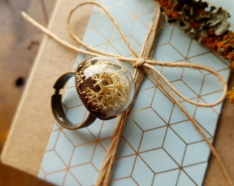 White Moss Terrarium Ring