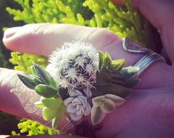 Living Succulent Ring