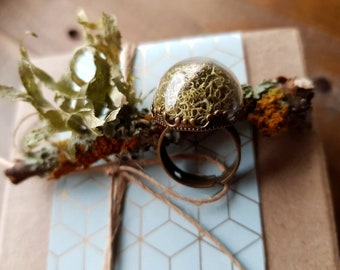 Pale Moss Terrarium Ring