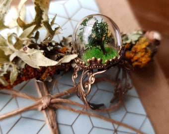 Little Tree Ring