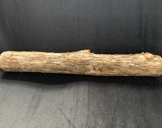 Ironwood Log, approximately 18 inches long and about 2 1/2 inches diameter