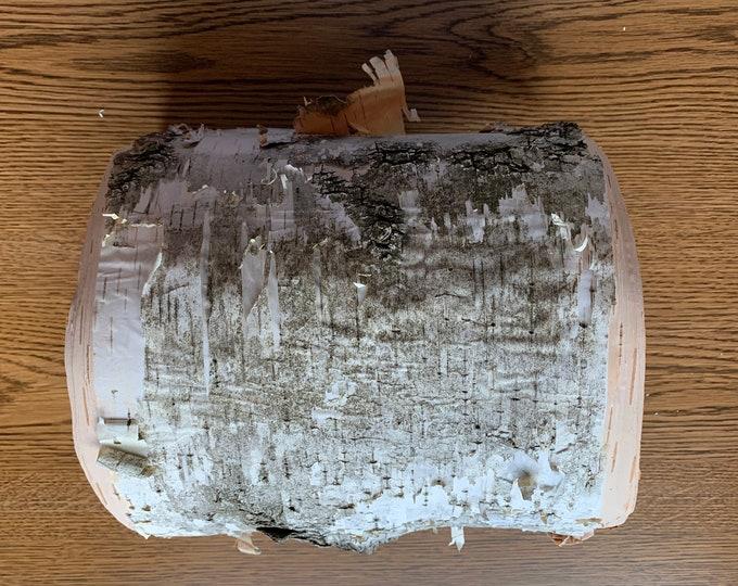 White Birch Bark, Semi-Rounded firm 8x13 inch piece