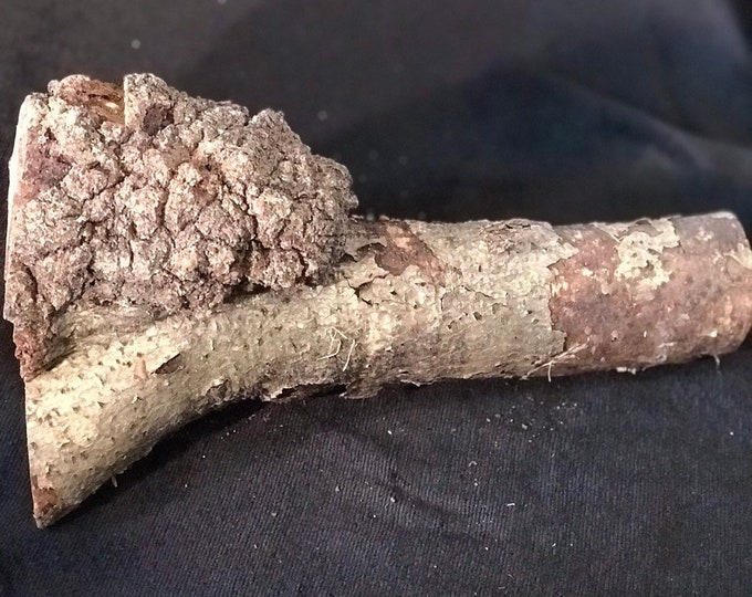 Oak Burl, approximately 4 inches x 4 inches