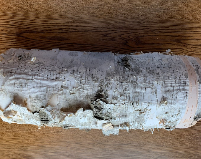 White Birch Bark, Semi-Rounded, Approximately 17 x 11 inches