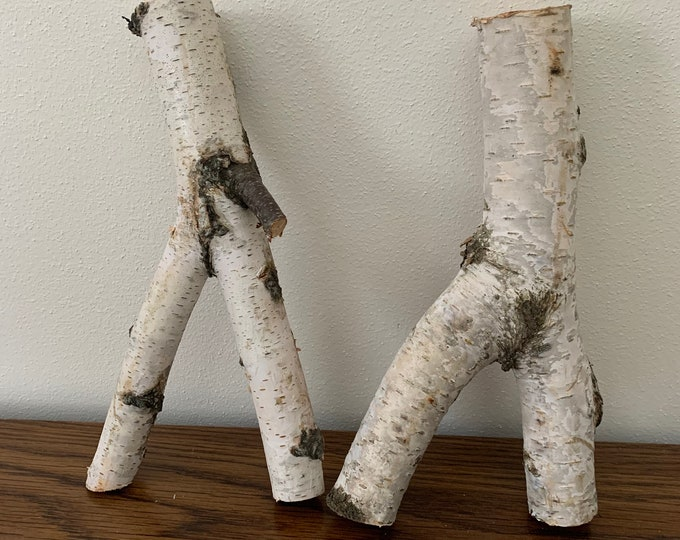 White Birch Y shaped logs, 2 count, about 8 inches long