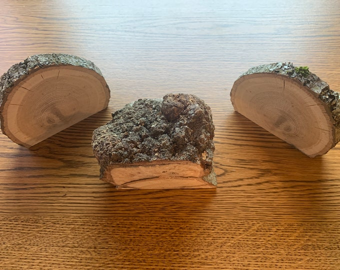 Oak Burl Slabs with Bookend Slices