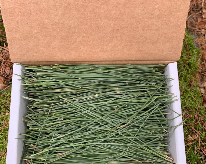 PINE NEEDLES, FRESH, 4 ounces, red pine