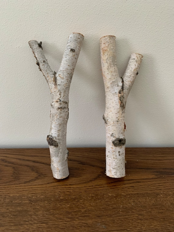White Birch Y shaped logs, 2 count, about 9 inches long