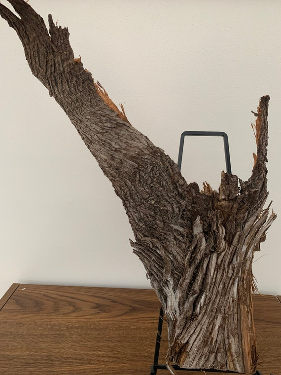 Cedar Bark, about 21 inches x 9 inches