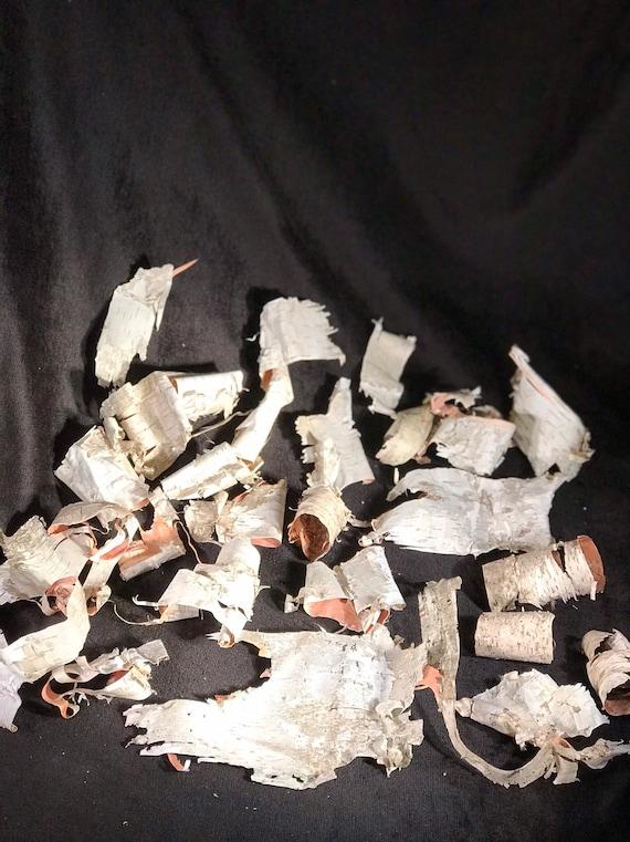 Birch bark, 25 assorted pieces of white birch bark